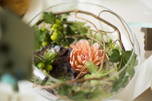 Dahlia and succulents