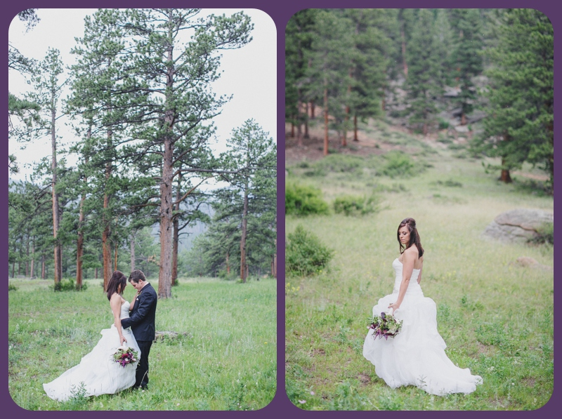 Della Terra Mountain Chateau Wedding